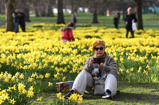 Woman sitting outdoors in park