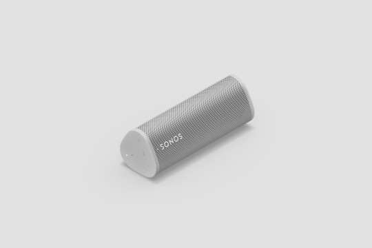 The Roam can be positioned either horizontally or vertically (Sonos)