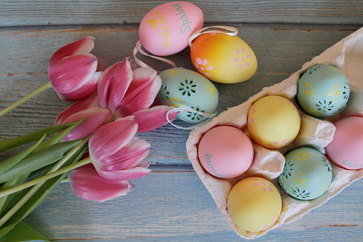 Easter Eggs And Pink Tulips
