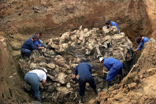 A mass grave. Radovan Karadžić, who committed genocide at Srebrenica, will serve out his life sentence at a British prison, Dominic Raab announced.