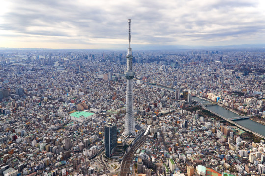 View of downton Tokyo focusing on the SkyTree